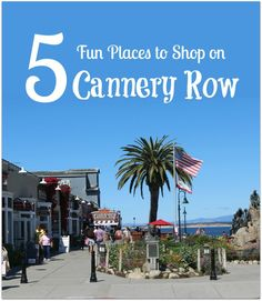 Shopping on Cannery Row in Monterey is so much fun!  We spent hours and there was so much more to do!