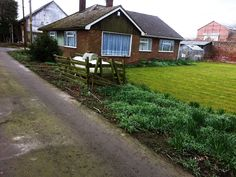 Bungalows For Sale, Houses, Plants, Homes, Plant, Home, Planting, House, Planets