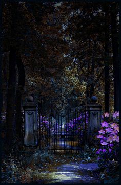 beautiful-portals:    celestialkisses:    (via mystic-minds, whisperingwillow-deactivated201)
