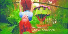 Have you been to +BeWILDerwood   It's an amazing treehouse adventure park with little pixies and fairies.  Only a 45 min drive from our camp on the #NorthNorfolkcoast  http://www.2posh2pitch.co.uk