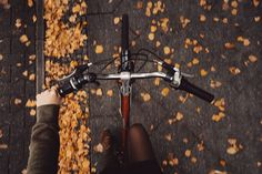 Brisk morning bike rides #fallfever #keepincozy