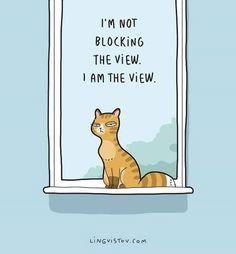 Relatable Cat Comics For Feline Owners & Appreciators - Memebase - Funny Memes Funny Cats, Funny Animals, Cute Animals, Funny Horses, Crazy Cat Lady, Crazy Cats, Funny Illustration, Illustrations, Halloween Illustration