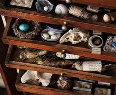 Le Petit Musee de Lou http://bel-inventaire.com/
