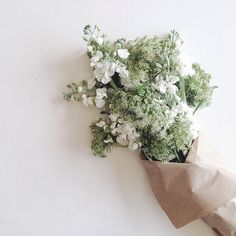 Intricate white blooms + light green bouquet wrapped in brown paper
