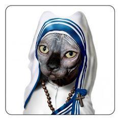 Famous Faces - Madre Teresa