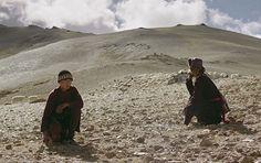 A 2010 Uni Melb graduate's film was screened at the Cannes Film Festival. Cannes Film Festival, Graduation, Drama, Australia, Mountains, Uni, Archive, Films, Travel