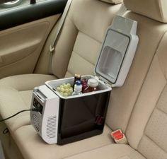 Wagan Portable Car Fridge or Warmer $31 from $55