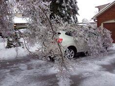 Tempestade de gelo, Toronto
