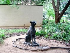 Staue in the Kruger Park Kruger National Park, Cool Places To Visit, South Africa, Garden Sculpture, The Good Place
