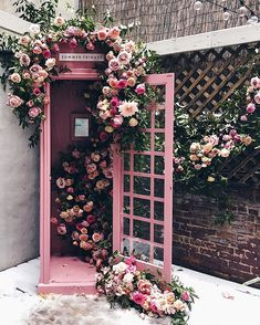 Sharing my favorite spots in NYC. Vitrine Design, Cafe Interior, Pink Aesthetic, Flower Wall, Store Design, Pretty In Pink, Flower Arrangements, Beautiful Flowers, Backdrops