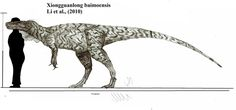 Xiongguanlong baimoensis by Teratophoneus on DeviantArt Dinosaur Drawing, Dinosaur Art, Prehistoric Creatures, Tyrannosaurus, Star Vs The Forces Of Evil, Character Description, Drawing Tools, Fossils, Moose Art