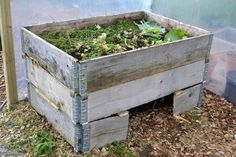 Bara några dagar efter att den byggts osar komposten av värme och doftar underbart av växtdelar som omvandlas till jord. Jag har äntligen byggt min kompost!