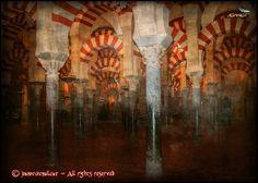 281 - Cordoba Mosque (Andalucía) Spain