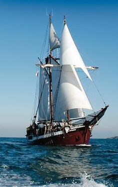 See related links to what you are looking for. Sailboat Art, Sailboats, Old Sailing Ships, Make A Boat, Full Sail, Old Boats, Sail Away, Tall Ships, Model Ships