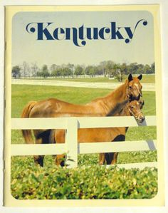 """KENTUCKY Guide """"We'd Like to Show It To You""""     No date, however the Governor at the time was Julian J. Carroll and he served as Governor of KY 1974 -1979    A lot of great pictures of Kentucky such as Cumberland Falls, camping, Sky Bridge, Outdoor dramas, and horse races.....    Great addition to anyones collection.     Condition: Good. Cover has some markings, some small tears, no folds, and spine is tight. Inside has no markings, no tears, no folds, and no missing pages."""