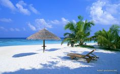 www.vacationsooner.com www.shaynanrunnels.dreamtrips.com/refer