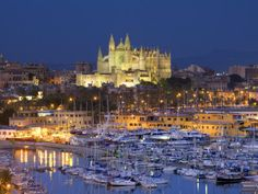 Palma, Mallorca, Spain. The capital of the autonomous community of the Balearic Islands. A beautiful place to visit. Take a tour of the Cathedral if you go.