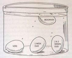 We vonden een enorm handige tip om te testen of je eieren nog vers zijn. Om deze tip uit te testen delen we ook graag een paar lekkere ei-recepten met je. Want met een ei kan het nooit verkeerd gaan, eitjes zijn gezond, lekker en je kunt er echt alle kanten mee op, van ontbijt …