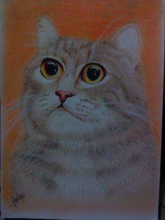 Cat again, cat in orange, my third cat drawing... :D