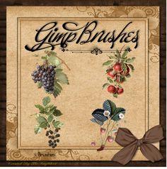 GIMP Brushes   Fruit Brushes by TheAngeldove.deviantart.com on @DeviantArt