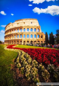Colosseum, Rome, Province of Rome, Lazio