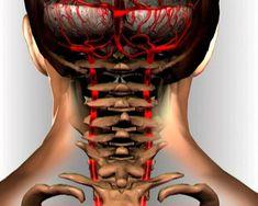 90% populácie s nedostatočnou telesnou hmotnosťou trpí cervikálnou osteochondrózou … Zastavte tento bludný kruh! | Báječné Ženy