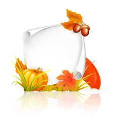 Autumn elements with blank paper background vector free