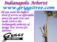 http://www.griggstree.com