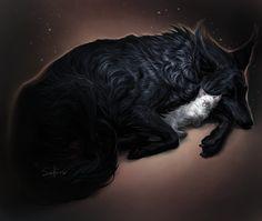 by Safiru Wolf Pictures, Pictures To Draw, Cute Wolf Drawings, Shadow Wolf, Mystical Animals, Wolf Artwork, Werewolf Art, Fantasy Wolf, Wolf Spirit Animal