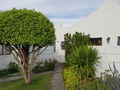 R1,400,000 2 Bed Wynberg Property For Sale - Property Info