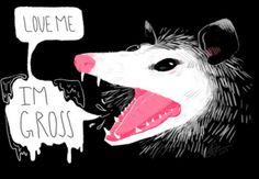 RIP Elvis the Possum