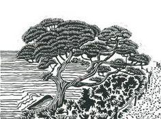 linocut tree - Google Search
