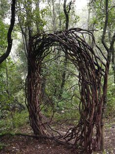 A Year in a French Forest: Sculpture 24 - Spencer Byles sculpture