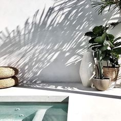 A swimming pool is an amazing asset to the home and a worthwhile investment for the summer months. However, many properties may not necessarily have the Exterior Design, Interior And Exterior, Outdoor Spaces, Outdoor Living, Houses Architecture, Summer Aesthetic, Tropical Vibes, Pool Designs, Plein Air