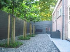 trees with greenery as a privacy 'fence'