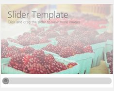 One of the great new features of Storyline 2 is the ability to quickly and easily add interactive sliders. This download contains a pre-built slider that links to four layers with additional content.