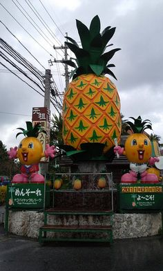 Nago Pineapple Park, Nago, Okinawa, Japan- mehehe i have to visit this simply to say that i've been.