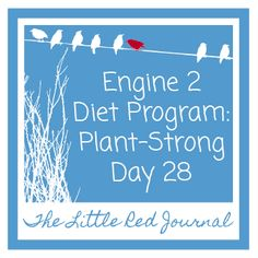 Engine 2 Diet Program: Plant-Strong Day 28 | The Little Red Journal | #vegan #healthy #food #change #Engine 2
