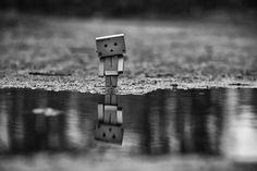 Danbo Mini im Regen