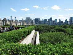 Check out the view from the rooftop garden at the Met.