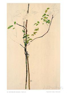 Young Tree Sammlerdruck von Egon Schiele bei AllPosters.de