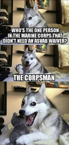 Funny Puns Stupid Ideas Source by LightshadowLOL More from my siteFunny Jokes Texts Puns Super IdeasFood Humor Funny Puns Humor Internet Trendy Ideas For Funny Puns For Kids Corny JokesFunny puns jokes humor words 67 Ideas Funny Puns Drawing Funny Dog Jokes, Puns Jokes, Corny Jokes, Dad Jokes, Stupid Funny Memes, Cat Memes, Memes Humor, Puns Hilarious, Funny Animal Quotes