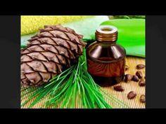 Cedarwood Oil || Allin Exporters