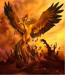 Phoenix Rising- A pretty awesome inspiration for our dear Colleen Houck!