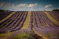 Sur la route des vacances quel itinéraire bis allez-vous prendre pour découvrir les charmes de nos belles régions de France ?