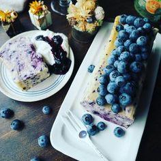 久々に今日のにゃんこ~❤と超絶濃厚しっとりたまら~ん♪ブルーベリーチーズケーキテリーヌ | しゃなママオフィシャルブログ「しゃなママとだんご3兄弟の甘いもの日記」Powered by Ameba