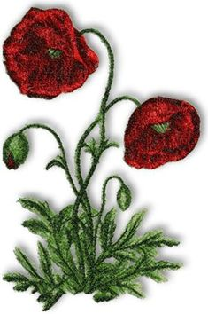 Advanced Embroidery Designs - Wild Poppy