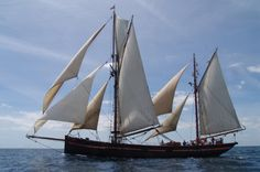 Leader a Brixham Trawler is an ideal traditional boat to sail on.