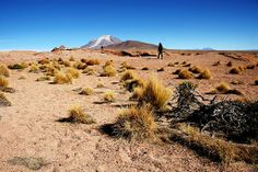 Deserto de Silolil - Sur Lipez.