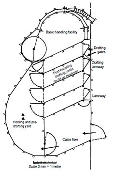 Figure 3. Laneway drafting in lanes and yards attached to the basic handling facility